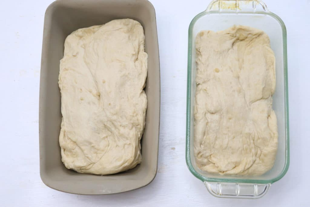 two loafs of white bread dough
