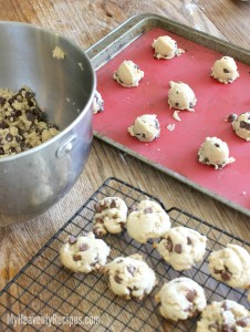 Chocolate Chip Cookies Recipe (Video 1)
