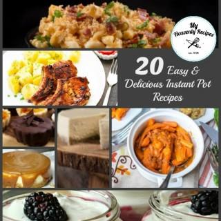 20 Easy & Delicious Insta Pot Recipes