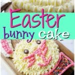 Bunny Cake for Easter Dessert + Video