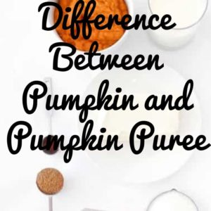 Difference Between Pumpkin and Pumpkin Puree