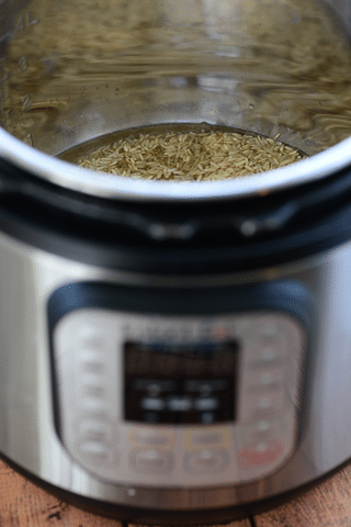 brown rice and water in instant pot