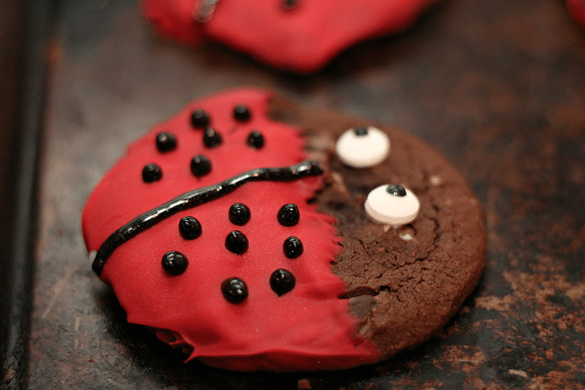 ladybug cookies on cookie sheet