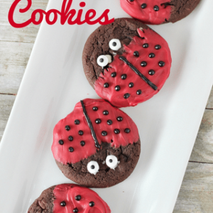 ladybug cookies on white tray with text
