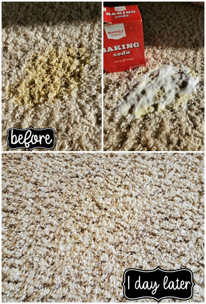 How To Remove Old And New Carpet Pet Stains My Heavenly Recipes