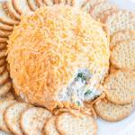 Bacon Ranch Cheese Ball Recipe (Sure to Impress!)